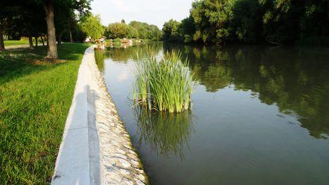 A Mosoni-Duna folyó Halászinál, 2016. június 24.-én 10