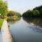 A Mosoni-Duna folyó Halászinál, 2016. június 24.-én 3