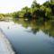 A Mosoni-Duna folyó Halászinál, 2016. június 24.-én 8