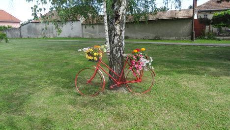 Virágos település Máriakálnok, 2016. június 21.-én 2