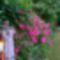 Ma_ezek_a_viragok_szepitik_kertemet_14_1995028_7673_s