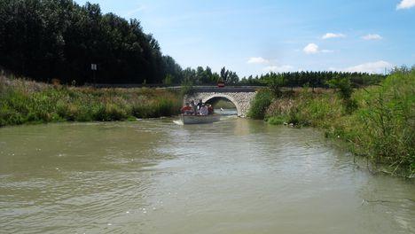 Mosoni-Duna, a Libafarmi holtág rávezető csatornája, Feketeerdő 2016. július 17.-én 1