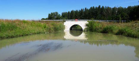 Mosoni-Duna, a Libafarmi holtág rávezető csatornája, Feketeerdő 2016. július 17.-én 6