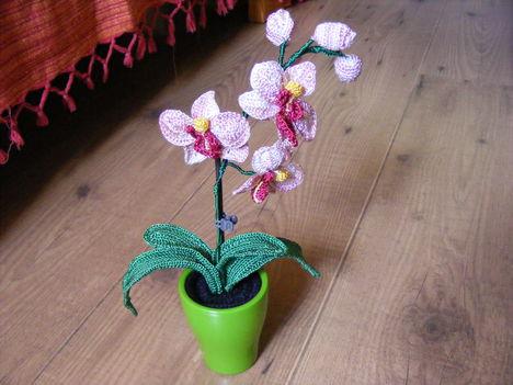 orchidea szülinapra :)