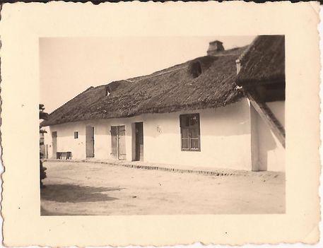 Kóny, 1920.