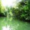 Papszigeti  csatorna a hullámtéri vízpótlórendszerben, Kisbodak 2016. július 14.-én 2