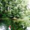 Papszigeti  csatorna a hullámtéri vízpótlórendszerben, Kisbodak 2016. július 14.-én 3
