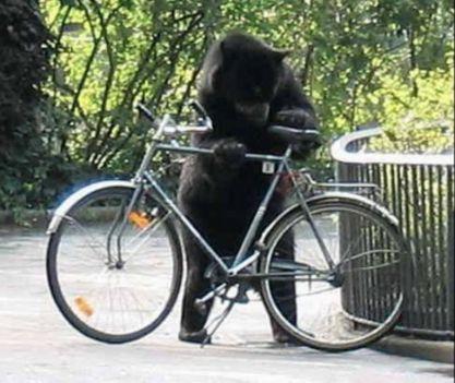De mehetünk kerékpárral is...