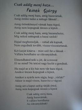 g menj haza(Feinek György)