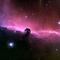 NASA The Horsehead Nebula