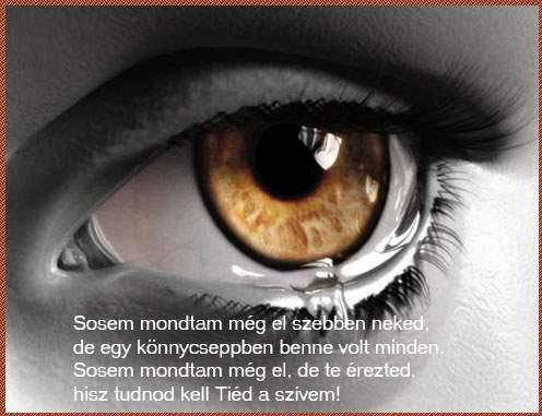 szeretet szerelem idézetek Szeretet: szerelem idézet (kép)
