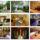 Wellness_hotel_szindbad_balatonszemes_100262_63130_t
