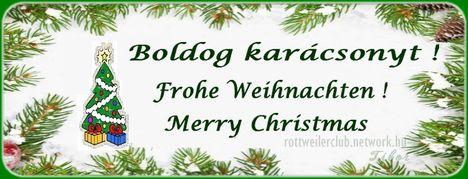 Boldog Karácsonyt Rottweileresek !
