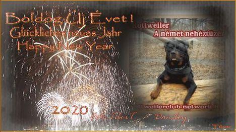 Boldog Új Évet Rottweileresek !