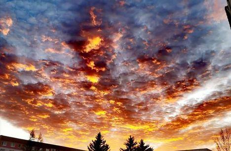 Vörös fénnyel ébredt a hajnal. Dáma Lovag Erdős Anna verse.