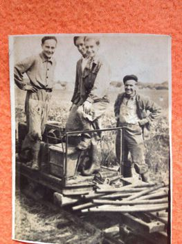 Diákmunka a Tőzegen az 50-es években
