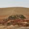 Marokkó 2008 1712