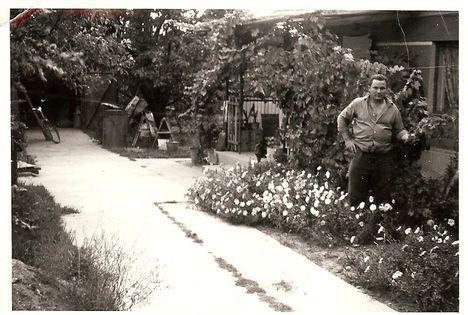 Maróti László kertész 1967.