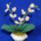 Gyongy_orchidea_harisnya_levellel_2012310_1797_s