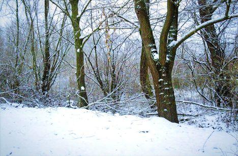 Első havazás 2021. évben.