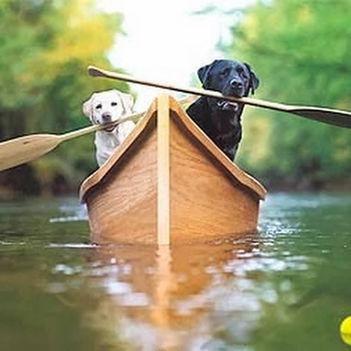Aranyosi Ervin: Egy csónakban evezünk