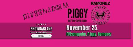 Plüssnapalm, P.Iggy, Ramonez koncert, ShowBarlang