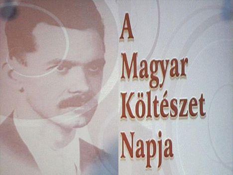 Magyar költészet napja.ápr.11.Dáma Lovag Erdős Anna verse.