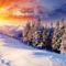 tél-Havas fenyves napkeltében