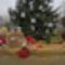 Várjuk a Karácsonyt