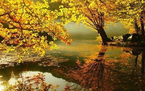 Tóth János: Megjött az ősz
