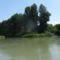 Jegenyési Duna-ág az Árpa-sziget felső végénél, Doborgazsziget 2016. július 13.-án