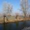 Lipóti Holt-Duna a Hattyú-sziget felől, Lipót 2016. december 31.-én 1