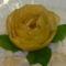 Almarozsa_2109696_3360_s