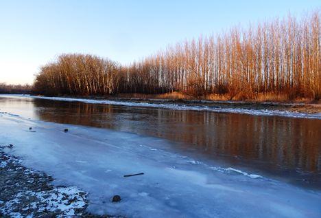 Jeges állapotok a Mosoni-Duna Mecsér község belterülete melletti szakaszán, 2017. január 11.-én 5