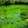 Plitvice-002_219728_17168_t