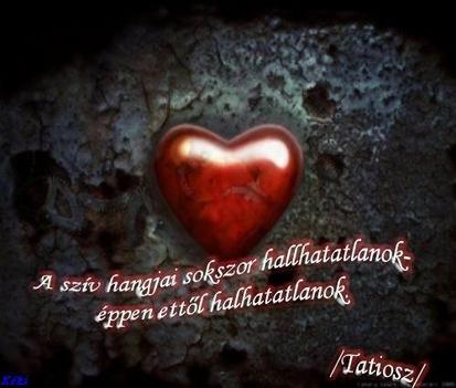 A szív hangjai...
