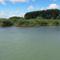 Dunaremetei hullámtéri nádas vizes élőhely, 2016. július 14.-én 1