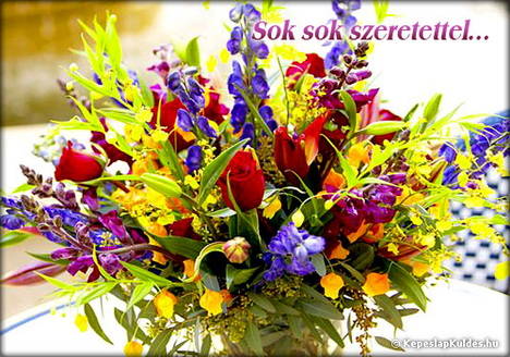 sok színes virág