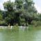 Vízitúrázók a Keszölcési alsó zárásnál, Dunasziget 2016. július 27-én 3