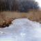 Befagyott a Nováki csatorna ami a Halászi (Arak) és Darnózseli községek közigazgatási határán is végig húzódik, 2017 január 31 (1)