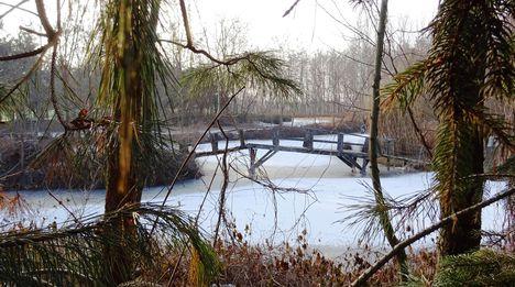 Befagyott a Hidegkúti (Hédervár-Darnózseli) csatorna jobb partján lévő, a Tamás vendégház melletti tó, Darnózseli 2017. január 27.-én 1