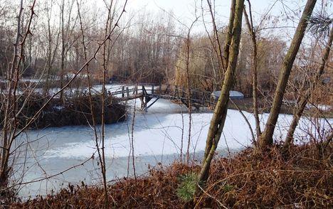 Befagyott a Hidegkúti (Hédervár-Darnózseli) csatorna jobb partján lévő, a Tamás vendégház melletti tó, Darnózseli 2017. január 27.-én 2