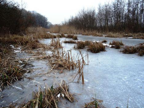 Befagyott a Nováki csatorna ami a Halászi (Arak) és Darnózseli községek közigazgatási határán is végig húzódik, 2017. január 31.-én