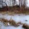 Befagyott a Nováki csatorna, ami a Halászi (Arak) és Darnózseli községek közigazgatási határán is végig húzódik, 2017. január 31.-én 1