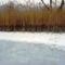 Túra a befagyott Öregszigeti belső tó jegén, Kisbodak 2017. február 03.-án 35