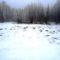 Túra a befagyott Öregszigeti belső tó jegén, Kisbodak 2017. február 03.-án 41