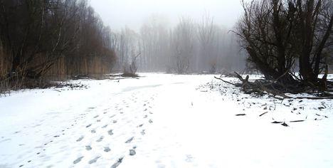 Túra a befagyott Öregszigeti belső tó jegén, Kisbodak 2017. február 03.-án 46
