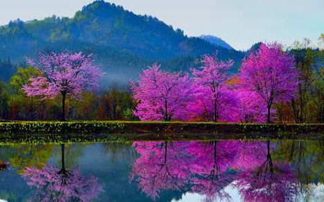Csodás természet 3