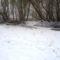 Téli kisvizes időszak az Erdei Duna-ágon, Lipót 2017. február 03.-án 6