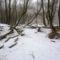 Téli kisvizes időszak az Erdei Duna-ágon, Lipót 2017. február 03.-án 8